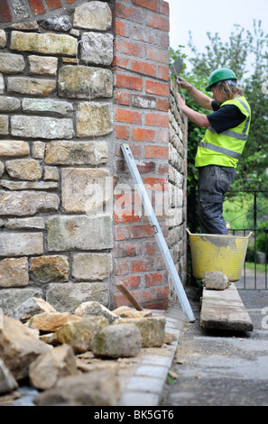Building of a garden wall with cotswold stone and cement mortar UK - Stock Photo