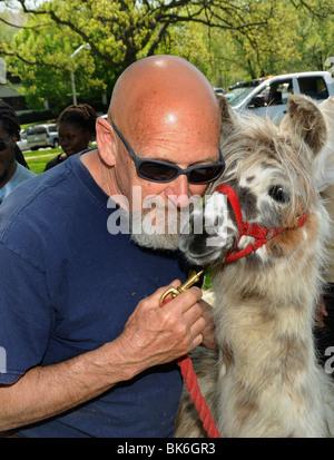 man with his pet Llama - Stock Photo