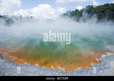 Rotorua, Waiotapu thermal area, Champagne Pool - Stock Photo