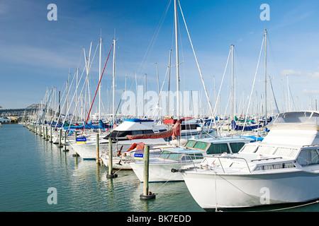 Westhaven Marina, Auckland - Stock Photo