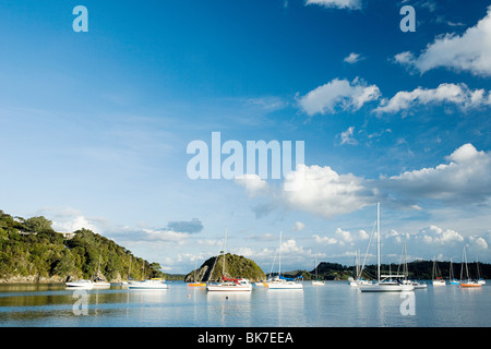 Bay of Islands, yachts in the bays near Kerikeri - Stock Photo