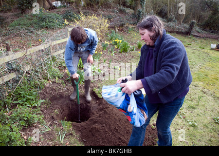 Model released teenage boy digging hole in garden to bury pet cat - Stock Photo