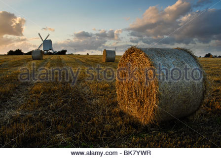 Chillenden Mill and harvested corn field at sunset, Kent, UK - Stock Photo