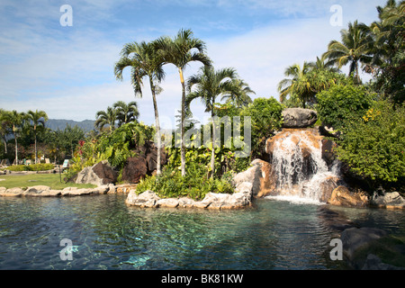 Landscaped swimming pool Hanalei Bay Resort Kauai HI - Stock Photo