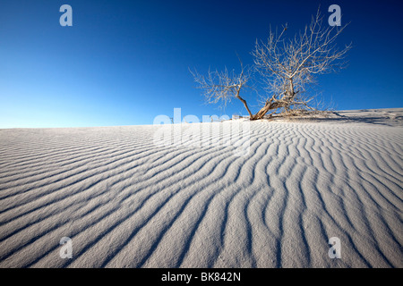 Silence, White Sands National Monument, New Mexico - Stock Photo