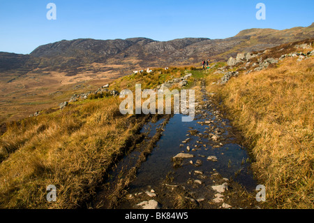 In the north of the Rhinog Mountains, Snowdonia, North Wales, UK - Stock Photo