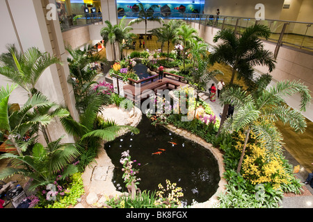Orchid garden in Changi Airport, Singapore, Indonesia, Southeast Asia - Stock Photo