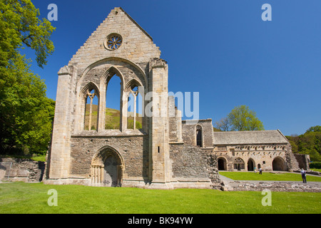 Ruins of an abbey, Valle Crucis Abbey, Llangollen, Denbighshire, Wales - Stock Photo