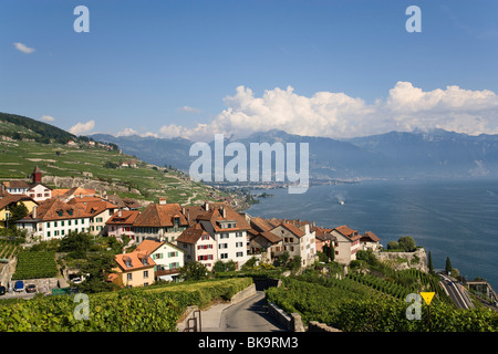 View over vineyards and Rivaz to lake Geneva, Lavaux, Canton of Vaud, Switzerland - Stock Photo