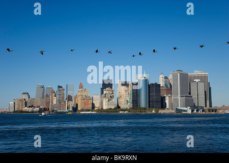 Birds over Skyline, Manhattan, New York City, New York, USA - Stock Photo