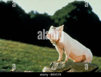 BABE -1995 - Stock Photo