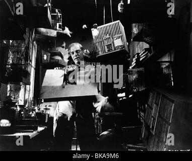 THE BIRDMAN OF ALCATRAZ (1962) BURT LANCASTER BOA 003P - Stock Photo