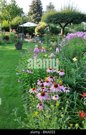 Nice Echinacea Purpurea Pink Parasol Stock Photo Royalty Free Image  With Lovely  Purple Cone Flower Echinacea Purpurea And Garden Phlox Phlox  Paniculata Design With Appealing Outdoor Garden Furniture Sale Also Garden Party At Buckingham Palace In Addition The Ivy Club Covent Garden And Garden Party Food As Well As Homebase Garden Heaters Additionally Rock Garden How To From Alamycom With   Lovely Echinacea Purpurea Pink Parasol Stock Photo Royalty Free Image  With Appealing  Purple Cone Flower Echinacea Purpurea And Garden Phlox Phlox  Paniculata Design And Nice Outdoor Garden Furniture Sale Also Garden Party At Buckingham Palace In Addition The Ivy Club Covent Garden From Alamycom