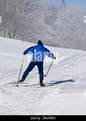 Cross country skier skis / skiing in the French Alpine resort of Plateau De Sur Lyand. Ain department of France. - Stock Photo
