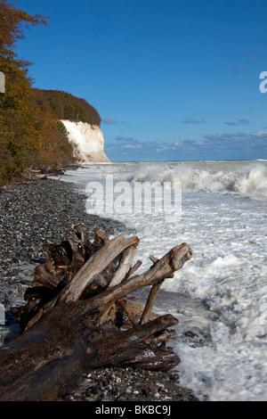 Chalk cliffs in Jasmund National Park on the island of Ruegen, Mecklenburg-Western Pomerania, Germany. - Stock Photo