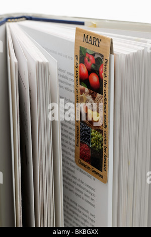 Open book with magnetic bookmark attached - Stock Photo