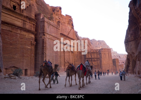 Tourists and camels in the 'Street of Facades' in Petra, Jordan - Stock Photo