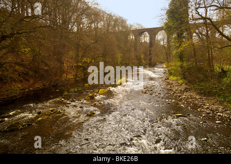Almondell and Calderwood Country Park, Livingston - Stock Photo