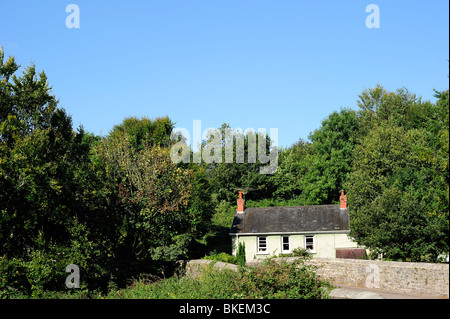A tiny country cottage, completely surrounded by greenery, under a summer sky. Space for text in the sky. - Stock Photo