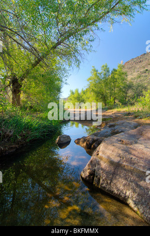 Monsoon rains provide a valuable water source along the Badger Springs Trail, Agua Fria National Monument - Stock Photo
