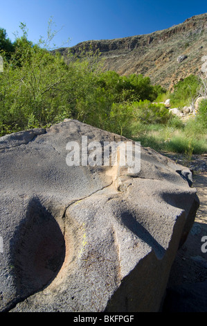 A large basalt boulder bears the marks of metates, food grinding stones, Badger Springs Trail, Agua Fria National - Stock Photo