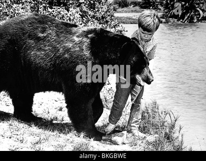 GENTLE BEN (TV) CLINT HOWARD - Stock Photo