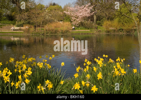 England London Regents Park Queen Mary's garden pond - Stock Photo