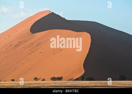 The Strong Morning Sun Casts Shadows on Dune 45 in Sossusvlei, Namibia