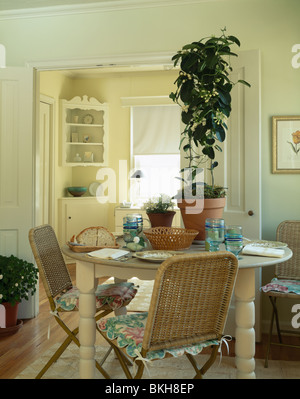 Tall green houseplant on circular cream table in cream dining room with floral cushions on wicker chairs - Stock Photo