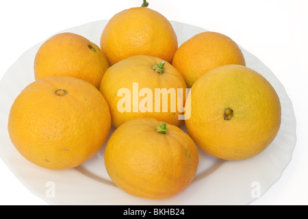a group of ripe oranges on a white plate isolated on white background - Stock Photo