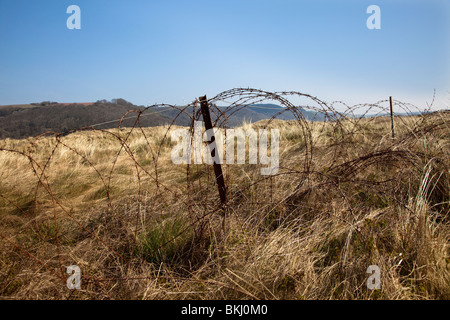 Rusty barbed wire fence at edge of MOD firing range Pendine Wales UK - Stock Photo