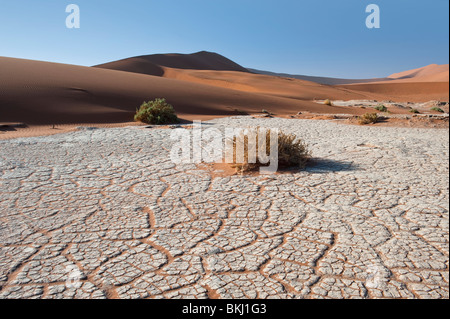 Dry River Bed Leaving a Craquelure Effect in the White Clay in Sossusvlei, Namibia - Stock Photo