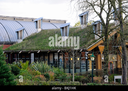 Green roof on The Centre for Understanding the Environment (CUE) at The Horniman Museum London England UK - Stock Photo