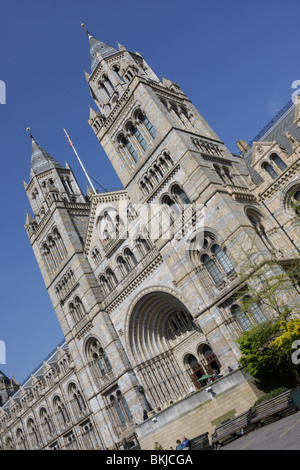 Dynamic low level angled aspect of the main entrance to the Natural History Museum In South Kensington in London. - Stock Photo