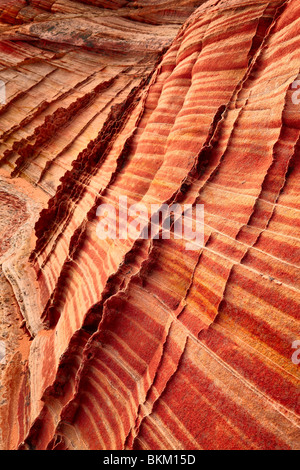 Details in striated sandstone formations in Vermilion Cliffs National Monument - Stock Photo