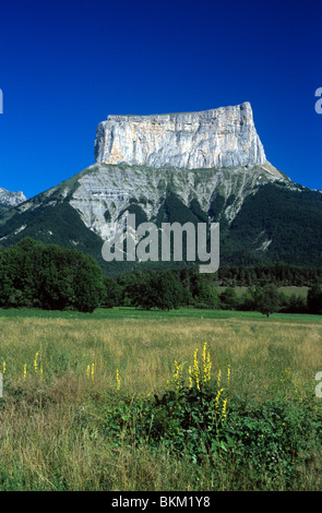 Mont Aiguille, Peak or Mountain and Wildflower Meadow, Le trièves, Vercors Regional Park, French Alps, France - Stock Photo