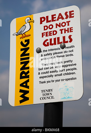 Do not feed seagulls sign Tenby Wales UK - Stock Photo