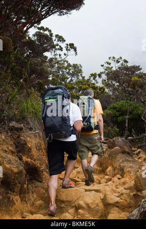 Hikers on the Mt Kinabalu summit trail. Kinabalu National Park, Sabah, Borneo, Malaysia. - Stock Photo
