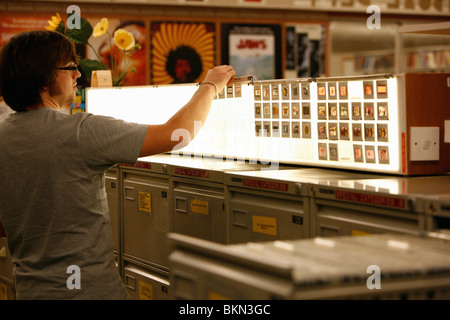 Male student looking at slides on a lightbox in a university library - Stock Photo