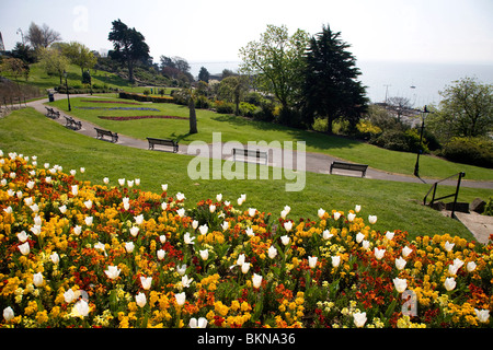Flower beds on Cliff Gardens, Southend, Essex - Stock Photo