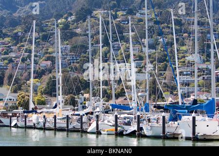 Sailboats docked in Sausalito, California. - Stock Photo