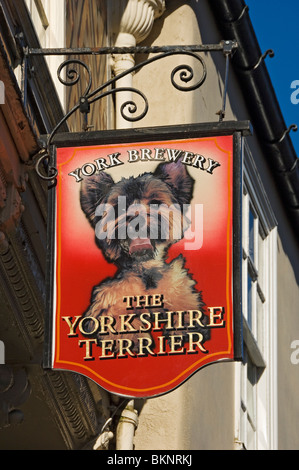 The Yorkshire Terrier pub sign Stonegate York North Yorkshire England UK United Kingdom GB Great Britain - Stock Photo
