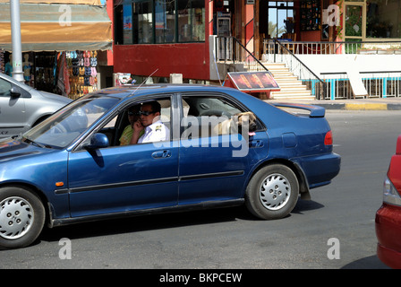 Street scene with policeman driving car and dog in backseat of car - Stock Photo