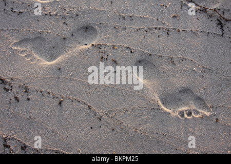 Footprints in the sand, Bald Point, Florida - Stock Photo