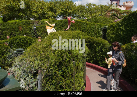 Paris, France, Theme Parks, People Visiting Disneyland Paris, Maze Garden - Stock Photo