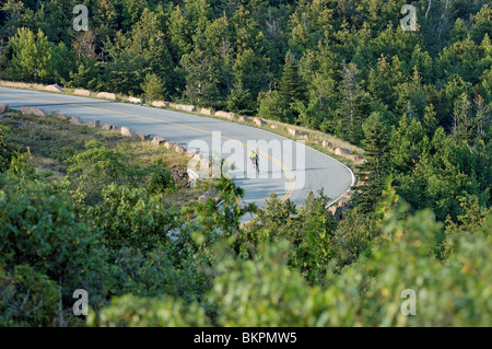 Stock photograph of  a bicyclist descending through forest on Cadillac Summit Road, Acadia National Park, Maine, - Stock Photo