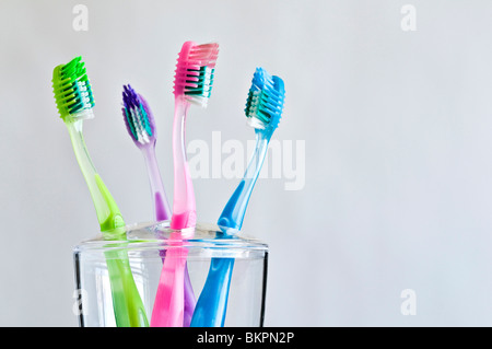 Four different colored toothbrushes in family toothbrush holder. - Stock Photo