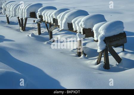 Snowcovered Mailboxes Anchorage SC Alaska - Stock Photo