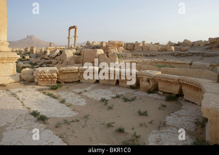 The bar was built in  2nd century AD after the city became part of the Roman province of Syria, Palmyra, Syria. - Stock Photo