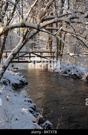 Stream in winter - Stock Photo